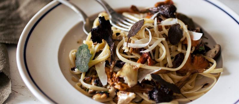 Pasta with wild mushroom sauce